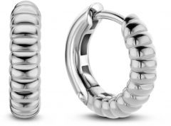 Ti Sento Milano Earrings 7839SI