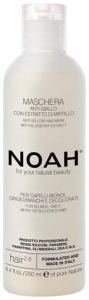 NOAH 2.6 Anti-Yellow Hair Mask with Blueberry Extract (250mL)