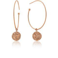 Ania Haie Earrings E009-03R